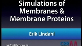 Thumbnail for entry Membrane simulations