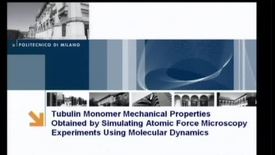 Thumbnail for entry Tubulin Monomer Mechanical Properties obtained by simulating Atomic Force Microscopy experiments using Molecular Dynamics