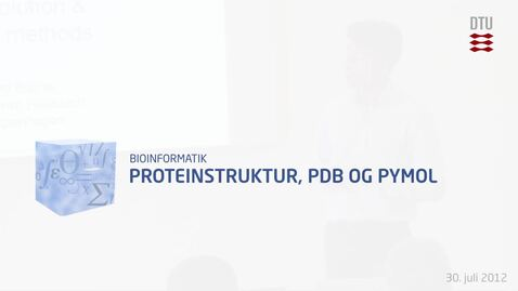 Thumbnail for entry Proteinstruktur, PDB og PyMol