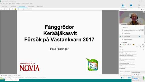 Thumbnail for entry Fånggrödor i stråsäde - ett fältförsök. Paul Riesinger Novia