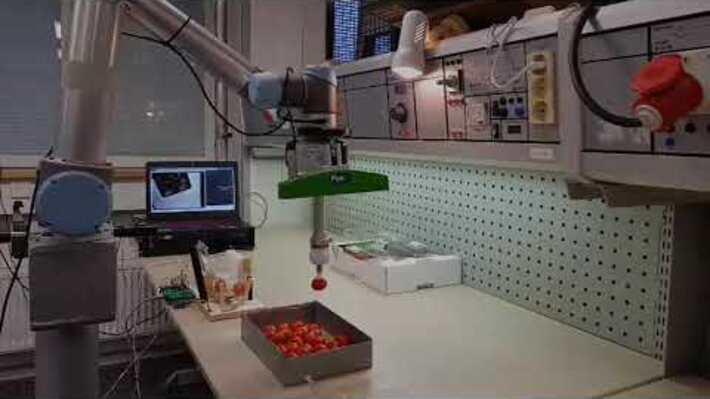Kokeilu yhteistyörobotiikan hyödyntämiseksi maatalousalalla, Y-Robo