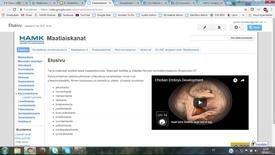 Thumbnail for entry Mistä löydän tietoa suomalaisesta maatiaiskanasta?