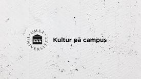 Miniatyr för inlägg Kolonien möter Markandeya Kultur på campus