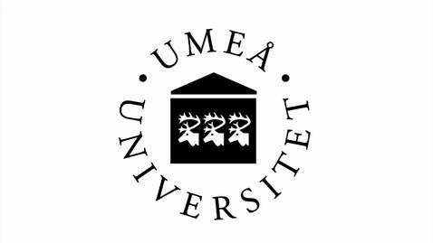 Miniatyr för inlägg UmU Bumper