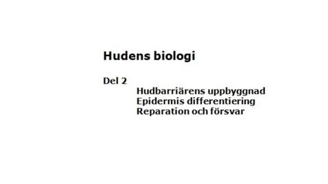 Miniatyr för inlägg T8 Hud - Hud-biologi 2 TE ht11.mp4