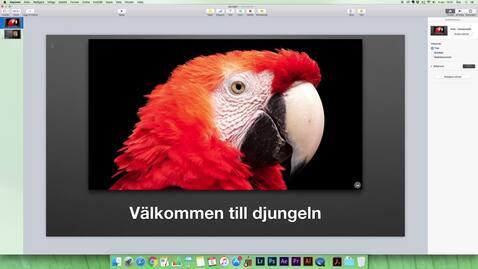 Miniatyr för inlägg Berättarröst som film på Mac