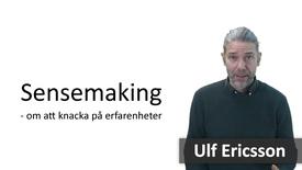 Miniatyr för inlägg Sensemaking