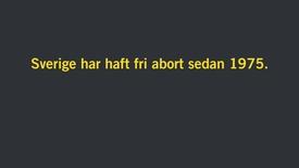 Miniatyr för inlägg Lena Lennerhed om abort i Sverige