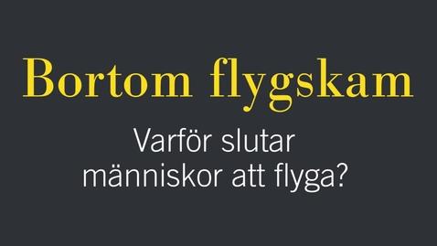 Miniatyr för inlägg Bortom flygskam: Varför slutar människor att flyga