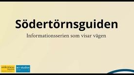Miniatyr för inlägg Sodertornsguiden - Att forsta och skriva akademisk text
