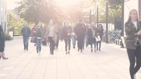 Miniatyr för inlägg Så här är det att studera på Södertörns högskola