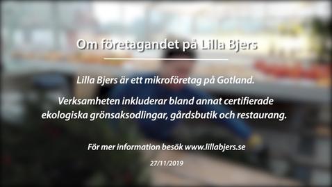 Miniatyr för inlägg Om företagandet på Lilla Bjers
