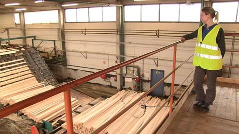 Thumbnail for entry Pia läste ingenjörsprogrammet i skog- och träteknik
