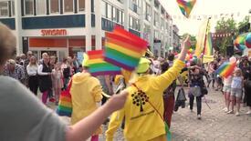 Miniatyrbild för inlägg Därför deltar Linnéuniversitetet i pride
