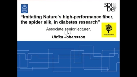 Miniatyrbild för inlägg Imitating Nature ́s high-performance fiber, the spider silk, in diabetes research