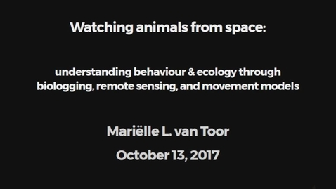 Miniatyrbild för inlägg Watching animals from space: understanding behaviour & ecology through biologging, remote sensing, and movement models