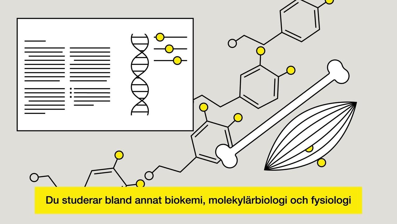 Studera till biomedicinsk analytiker