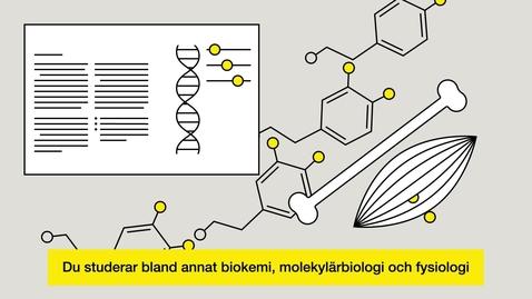Miniatyr för inlägg Studera till biomedicinsk analytiker