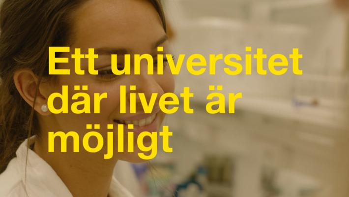 Linn – Att hitta rätt utbildning