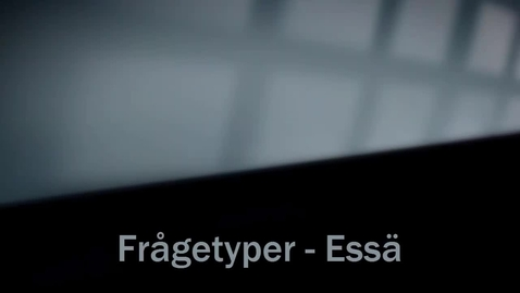 Thumbnail for entry Frågetyp Essä