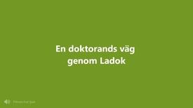Miniatyr för inlägg En doktorands väg genom Ladok