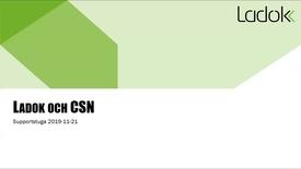 Miniatyr för inlägg Supportstuga: CSN